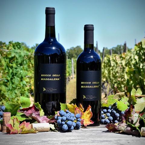 Bricco della Maddalena® - Vino Rosso