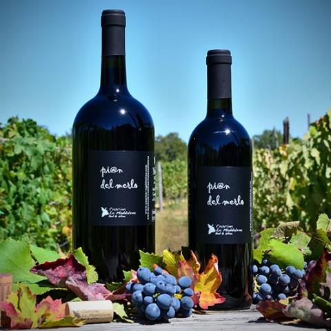 Pi@n del Merlo - Vino Rosso