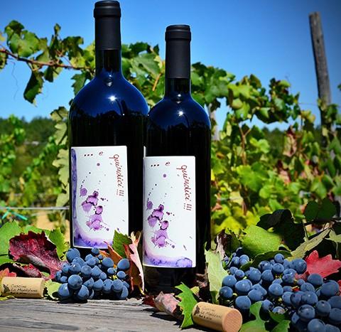 … e quindici !!! Vino rosso (2011)